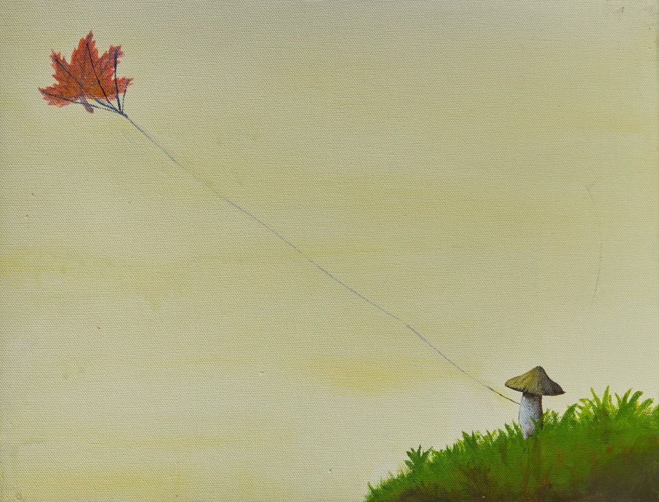飛起的楓葉